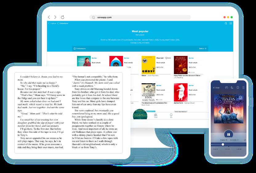 OverDrive (Rakuten OverDrive): eBooks, audiobooks and videos for