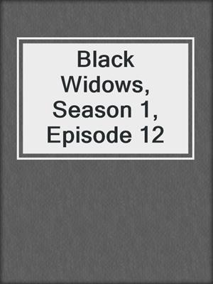 cover image of Black Widows, Season 1, Episode 12